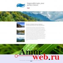 Выход на международный рынок создания сайтов